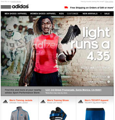 Adidas Newsletter
