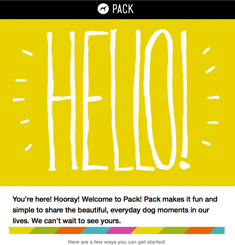 Pack Dog Newsletter