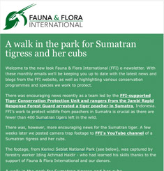 Fauna Flora Newsletter