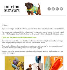 Martha Stewart Newsletter