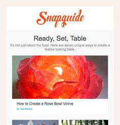 Snapguide Newsletter
