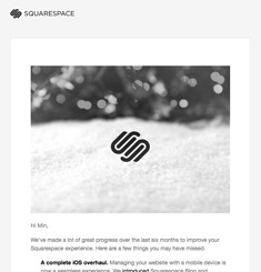 Square Space Newsletter
