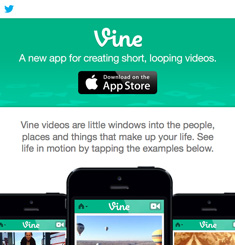 Vine Newsletter