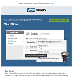Woo Themes Newsletter