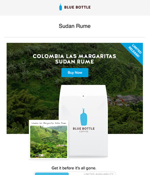 Blue Bottle Newsletter