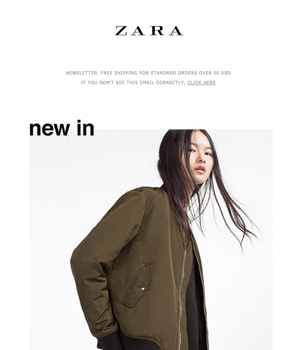 Zara Newsletter
